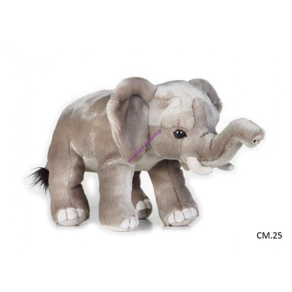 Ελέφαντας Αφρικής λούτρινος  NATIONAL GEOGRAPHIC