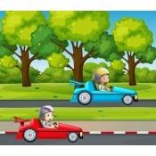 Μικροί Οδηγοί